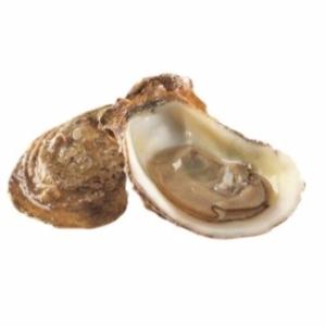 comprar-ostra-gallega-joaquin-farinas-especial