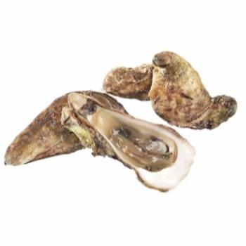 comprar-ostra-gallega-joaquin-farinas-flor